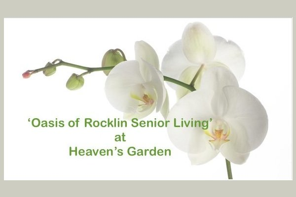 'Oasis of Rocklin' at Heaven's Garden II 136674